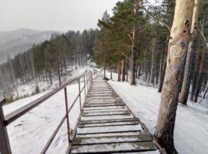Дерев'яна дорога не дасть заблукати в лісі допомагаючи легко вийти з нього