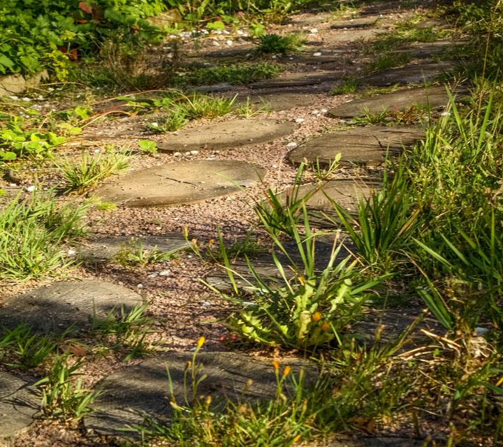 Комбинированная садовая дорожка из древесного спила